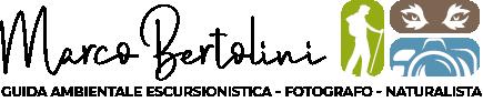 Marco Bertolini Logo