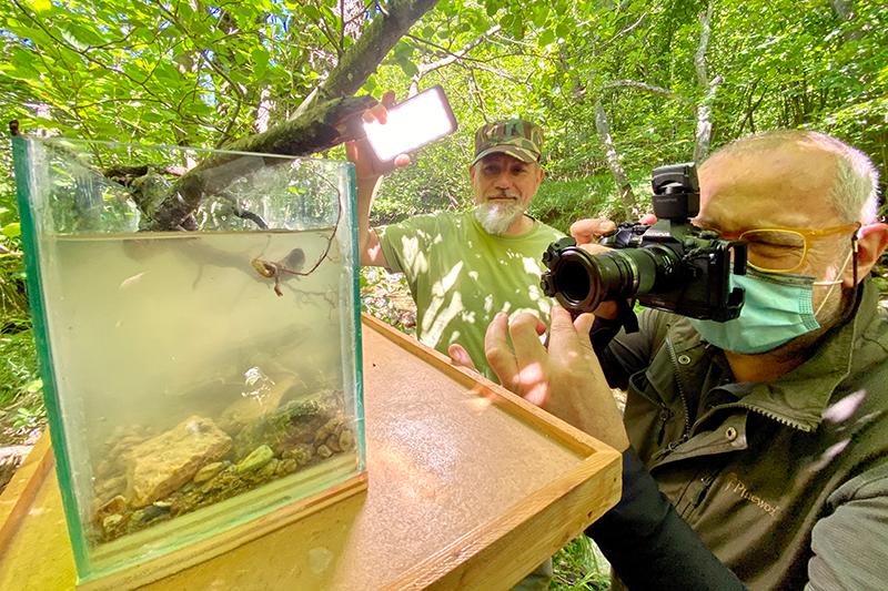 Fotografia in acquarietto durante un workshop di fotografia naturalistica.